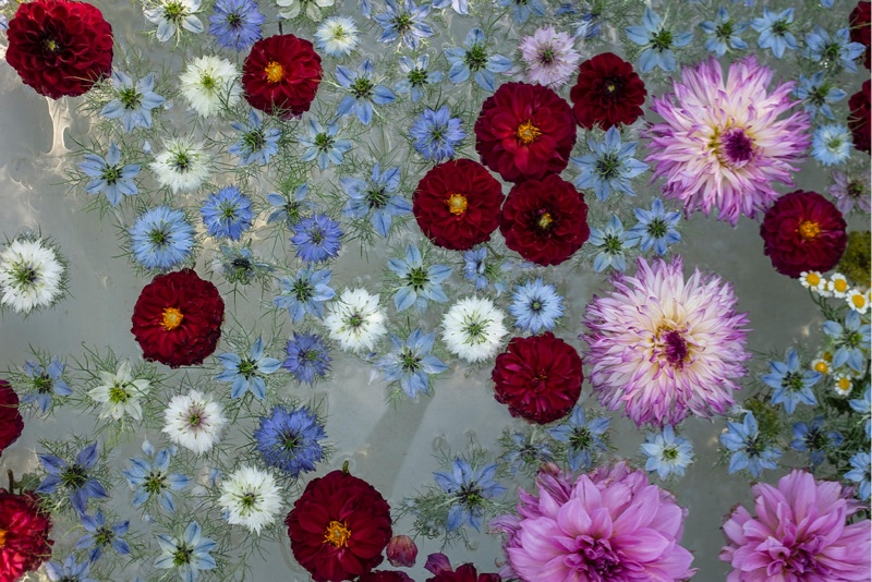 Image for City of Blooms: Floriculture in Paris